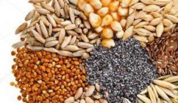 Инвестиции на бизнес. Покупка зерновых (агротрейдер)