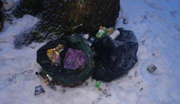 Ищу средства на организацию вывоза мусора в поселке