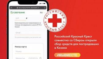 Сбор средств пострадавшим школьникам в Казани